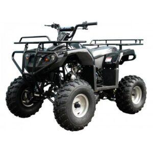 ATA125F1Black-500x500_1400x