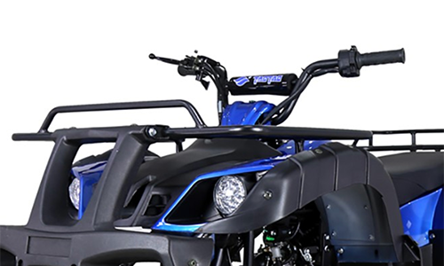 Bull150-speed-limiter